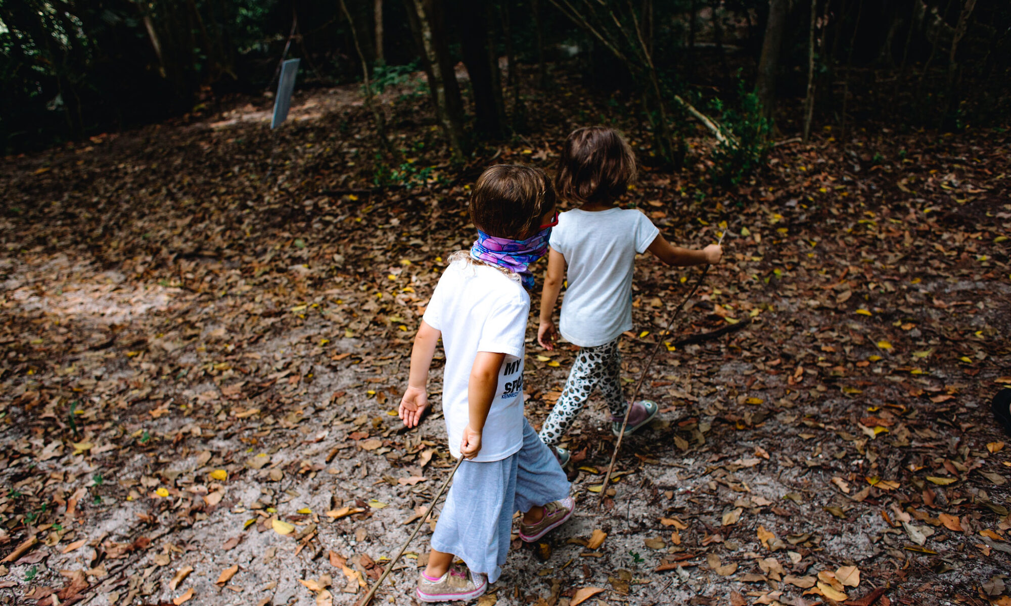Take Root Forest School