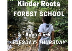 This image has an empty alt attribute; its file name is KinderRoots_ForestSchool.jpeg