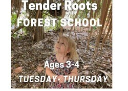 This image has an empty alt attribute; its file name is TenderRoots_ForestSchool.jpeg