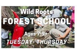 This image has an empty alt attribute; its file name is WildRoots_ForestSchool.jpeg